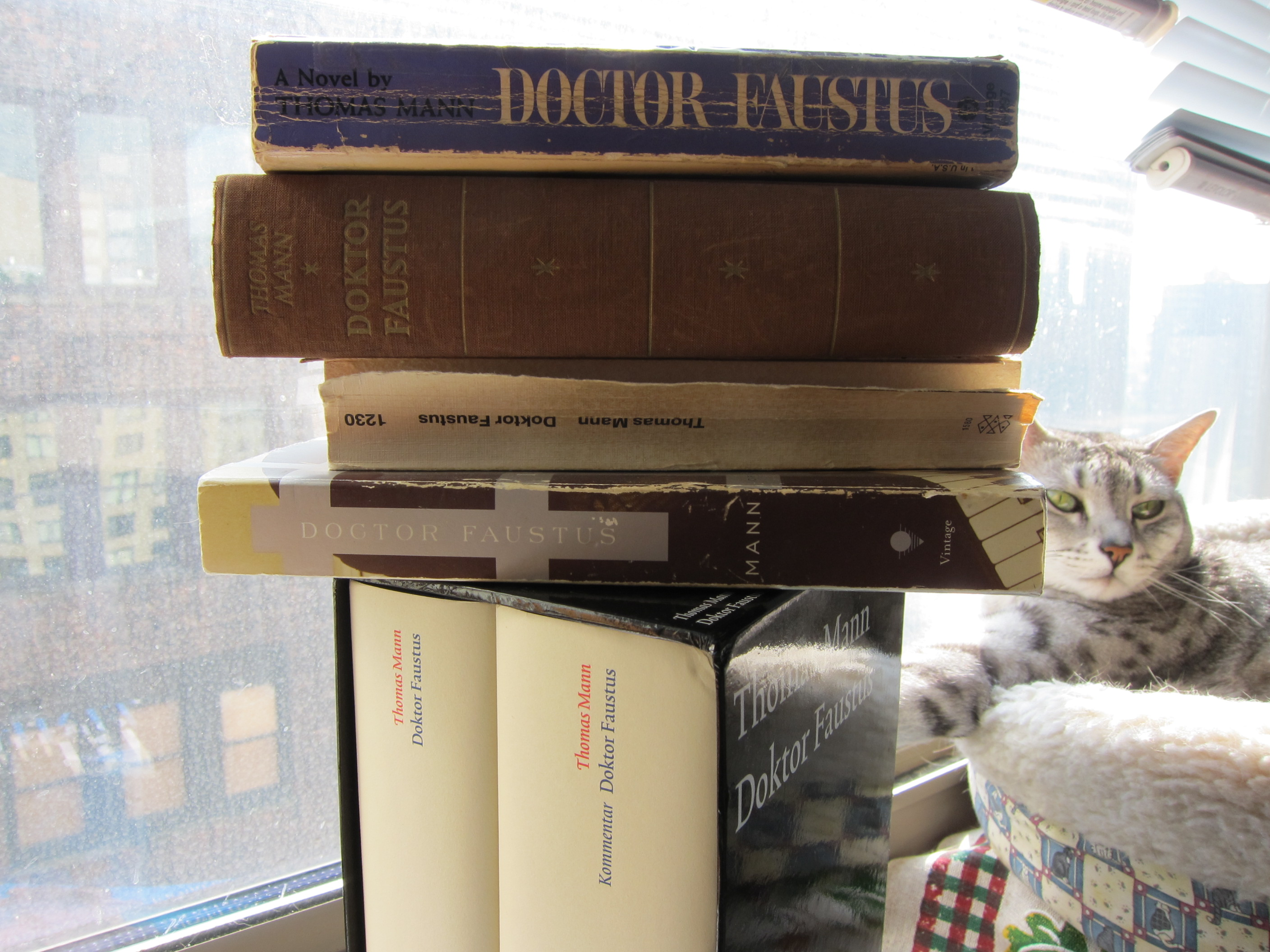alex ross the rest is noise apropos of nothing i offer a picture of my collected copies of thomas mann s doctor faustus a book that that has had as the author might have said